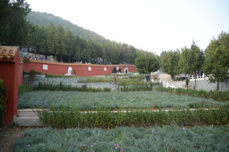 九里山环境