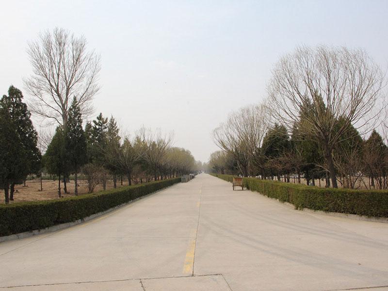 中华永久陵园景观