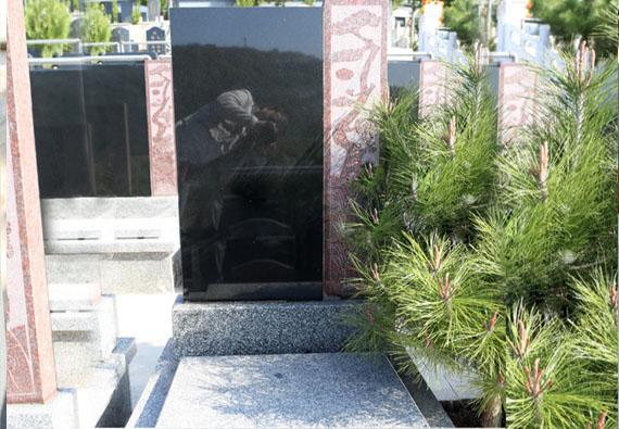 金牛山公墓-整理中