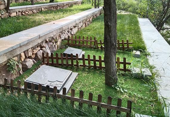 思亲园-树葬