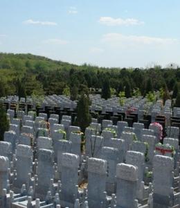 基本墓型-龙雕汉白玉墓碑